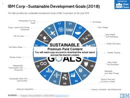 IBM Corp Sustainable Development Goals 2018