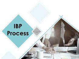 Ibp Processes Powerpoint Presentation Slides