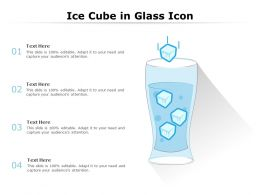 Ice Cube In Glass Icon