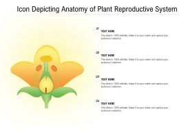 Icon Depicting Anatomy Of Plant Reproductive System