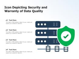 Icon Depicting Security And Warranty Of Data Quality
