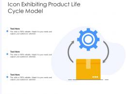 Icon Exhibiting Product Life Cycle Model