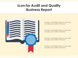 Icon For Audit And Quality Business Report