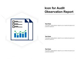 Icon For Audit Observation Report