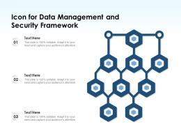 Icon For Data Management And Security Framework