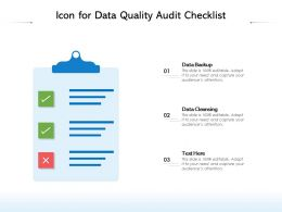Icon For Data Quality Audit Checklist