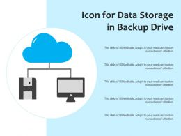Icon For Data Storage In Backup Drive