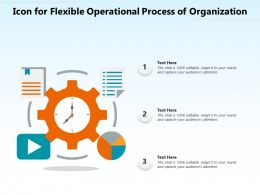 Icon For Flexible Operational Process Of Organization