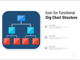 Icon For Functional Org Chart Structure