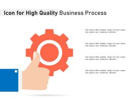 Icon For High Quality Business Process