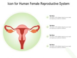 Icon For Human Female Reproductive System