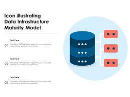 Icon Illustrating Data Infrastructure Maturity Model