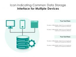 Icon Indicating Common Data Storage Interface For Multiple Devices