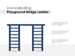 Icon Indicating Playground Bridge Ladder