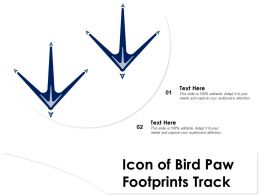 Icon Of Bird Paw Footprints Track