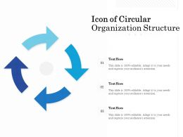 Icon Of Circular Organization Structure