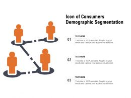 Icon Of Consumers Demographic Segmentation