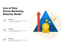 Icon Of Data Driven Marketing Maturity Model
