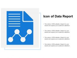 Icon Of Data Report