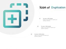 Icon Of Duplication