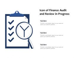 Icon Of Finance Audit And Review In Progress