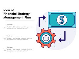 Icon Of Financial Strategy Management Plan