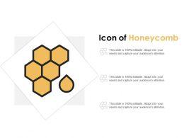 Icon Of Honeycomb