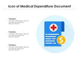 Icon Of Medical Expenditure Document