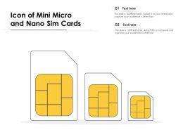Icon Of Mini Micro And Nano Sim Cards