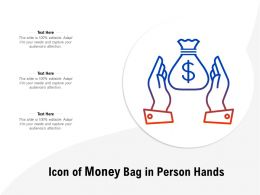 Icon Of Money Bag In Person Hands