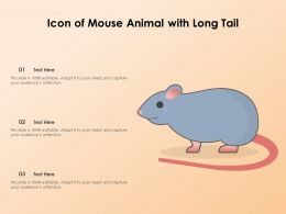 Icon Of Mouse Animal With Long Tail