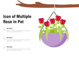 Icon Of Multiple Rose In Pot