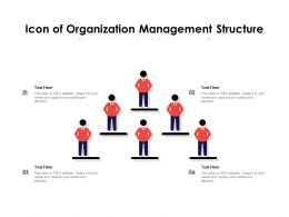 Icon Of Organization Management Structure