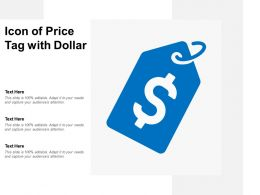 Icon Of Price Tag With Dollar