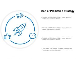 Icon Of Promotion Strategy