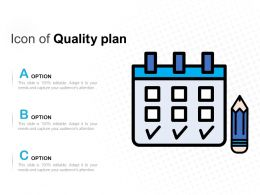 Icon Of Quality Plan
