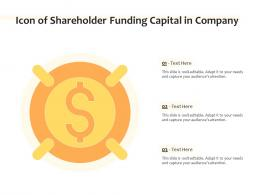 Icon Of Shareholder Funding Capital In Company