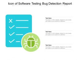 Icon Of Software Testing Bug Detection Report