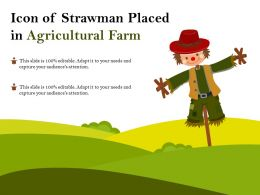 Icon Of Strawman Placed In Agricultural Farm
