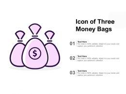 Icon Of Three Money Bags