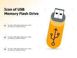 Icon Of Usb Memory Flash Drive