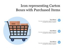 Icon Representing Carton Boxes With Purchased Items