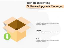Icon Representing Software Upgrade Package