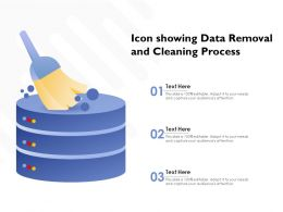 Icon Showing Data Removal And Cleaning Process