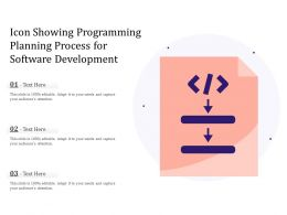 Icon Showing Programming Planning Process For Software Development