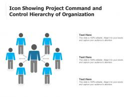 Icon Showing Project Command And Control Hierarchy Of Organization