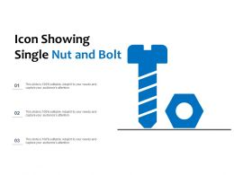 Icon Showing Single Nut And Bolt