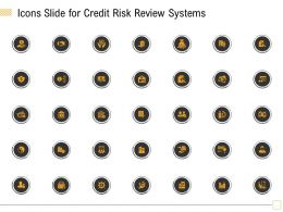 Icons Slide For Credit Risk Review Systems Ppt Powerpoint Presentation Gallery Show