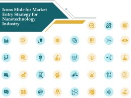 Icons Slide For Market Entry Strategy For Nanotechnology Industry Ppt Visual Aids