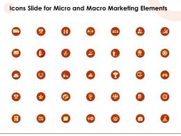 Icons Slide For Micro And Macro Marketing Elements Ppt Powerpoint Presentation Example Topics